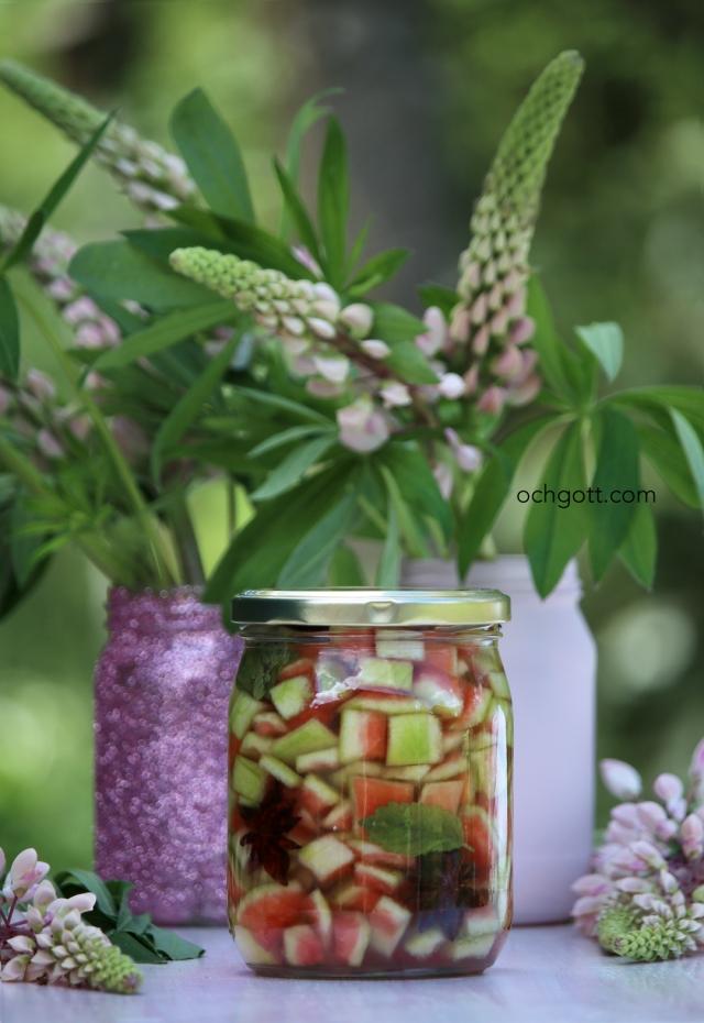 Picklad vattenmelonvita - Foto: Britt-Marie Knutsson