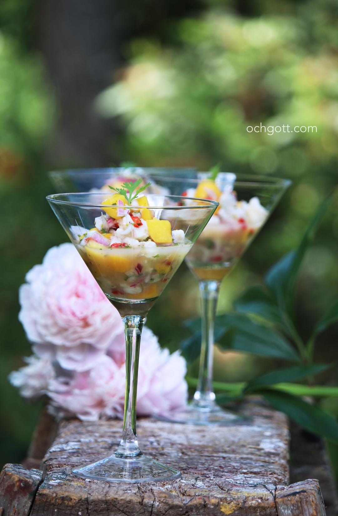 Ceviche - Foto: Britt-Marie Knutsson