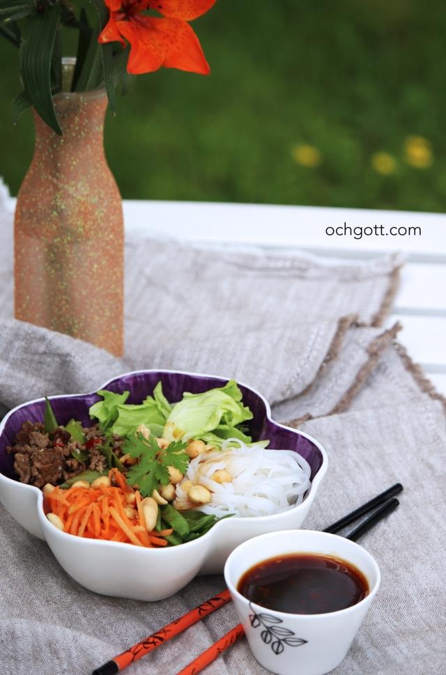 Asiatisk köttfärsbowl - Foto: Britt-Marie Knutsson